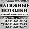 Отзыв по seo раскрутке от Сергей Мансурова